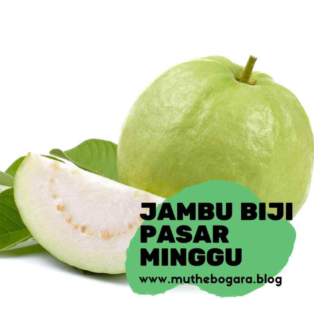 buah jambu biji